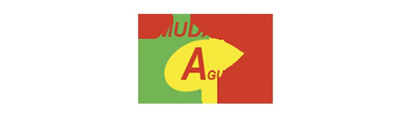 mudanzas agustrans