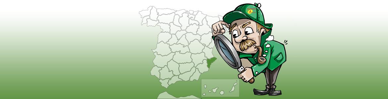 Listado de ciudades y poblaciones de la provincia de Alicante donde prestamos servicios.